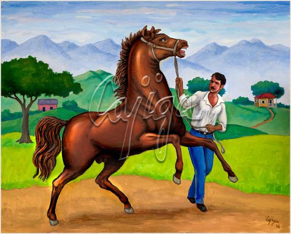 Domando al caballo